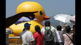 World traveling 40-foot rubber duck making… - (8/20)