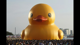 Giant rubber duck around the world_3925945