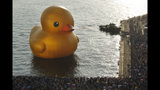 World traveling 40-foot rubber duck making… - (10/20)