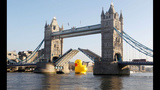 World traveling 40-foot rubber duck making… - (3/20)