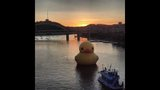 Quack Quack! WPXI viewers pose for pics with… - (20/25)