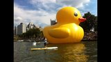 Quack Quack! WPXI viewers pose for pics with… - (23/25)
