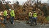 Photos: Overnight storm knocks down trees,… - (23/24)