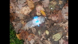 Water bottle bomb explodes in Beaver Co. mailbox - (1/4)