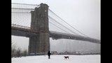Photos: Winter storm wallops Northeast - (5/25)