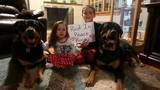 RIP Rocco: Pets pose for condolence photos… - (12/25)