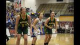 Photos, scores: WPIAL Basketball Championships - (15/25)