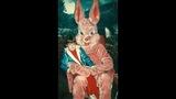 23 Creepy Easter Bunnies - (4/23)