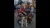 Hundreds of dogs walk in Pittsburgh Pup Crawl - (1/21)