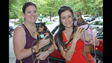 Mutts and Mingle event held at Misty Pines Dog Park - (4/25)