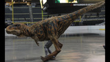 WPXI gets preview of 'Walking with Dinosaurs'… - (8/21)