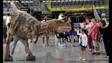 WPXI gets preview of 'Walking with Dinosaurs'… - (17/21)