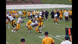 Photos: Steelers training camp at St. Vincent College - (9/25)