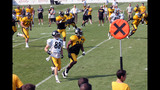 Photos: Steelers training camp at St. Vincent College - (8/25)