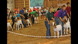 Washington County Fair underway - (3/25)