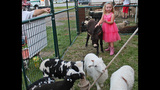Washington County Fair underway - (21/25)