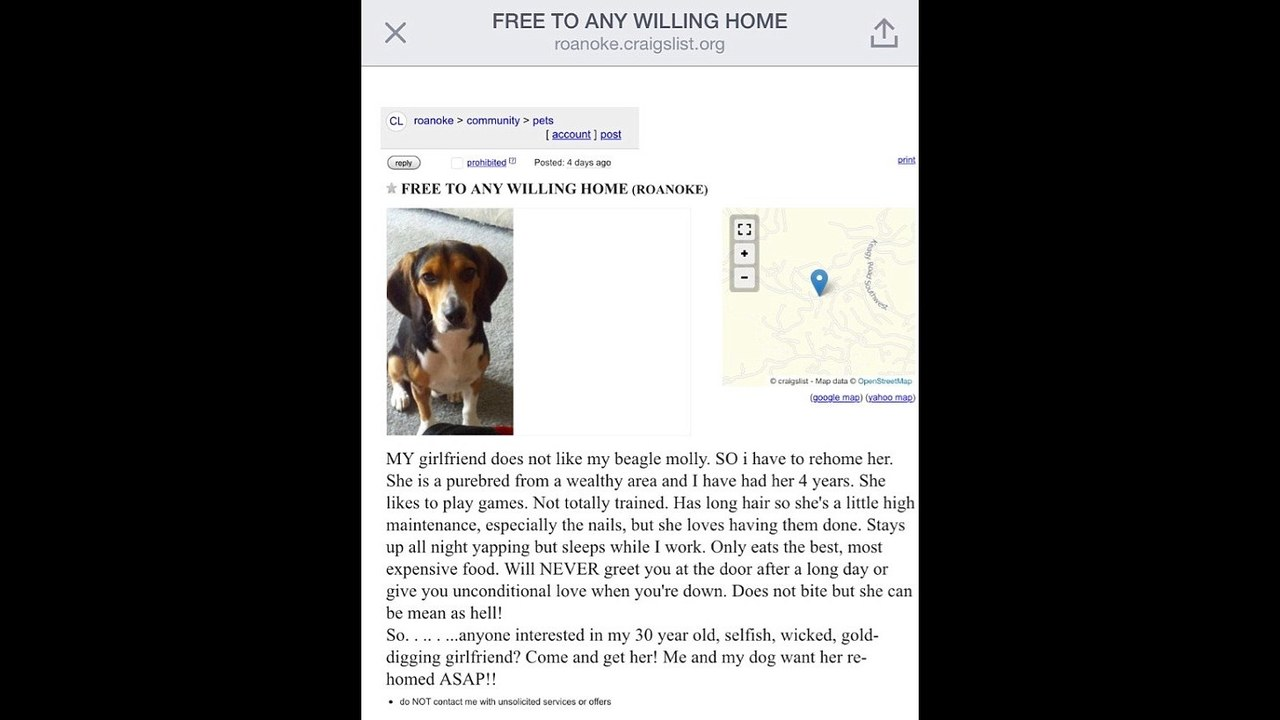 Man chooses beagle over girlfriend in viral Craigslist post