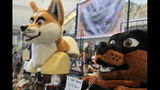 THEY'RE BACK! Furries take over Pittsburgh… - (7/25)