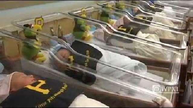 Pirate Parrot visits newborns at West Penn Hospital
