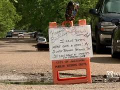 Pothole gets birthday celebration after city