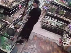 Police: Thief tried to hide python in his pants