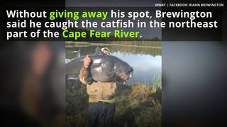 Colossal catfish caught by angler in North Carolina