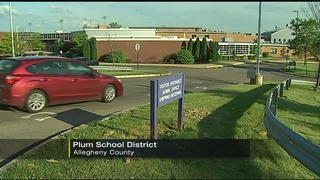 Judge OKs federal lawsuit against Plum schools after sex scandal