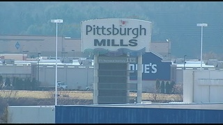 Pittsburgh Mills to hit auction block Wednesday