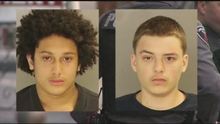 2 teens charged in stabbing deaths of 2 disabled men in their home