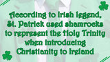 11 facts about St. Patrick's Day - (5/11)