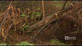 Photos: Landslide closes Hazelwood road - (18/18)