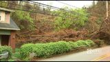 Photos: Landslide closes Hazelwood road - (14/18)