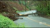 Photos: Landslide closes Hazelwood road - (17/18)