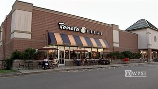 Panera Bread goes on hiring spree, adds delivery-tracking technology