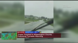 VIDEO: Trees toppled in Washington County following tornado warning