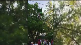 Watch: Girl falls 25 feet from Six Flags ride, caught by park guests