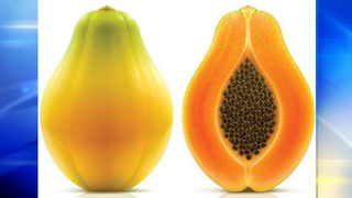CDC: Deadly outbreak of salmonella linked to papayas