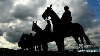 VIDEO: Pittsburgh Police need more horses