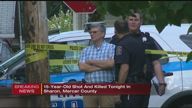 Teenager in custody after 15-year-old shot dead in Mercer Co  | WPXI