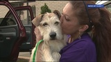 PAART arrives back in Pittsburgh after rescuing dogs from Texas