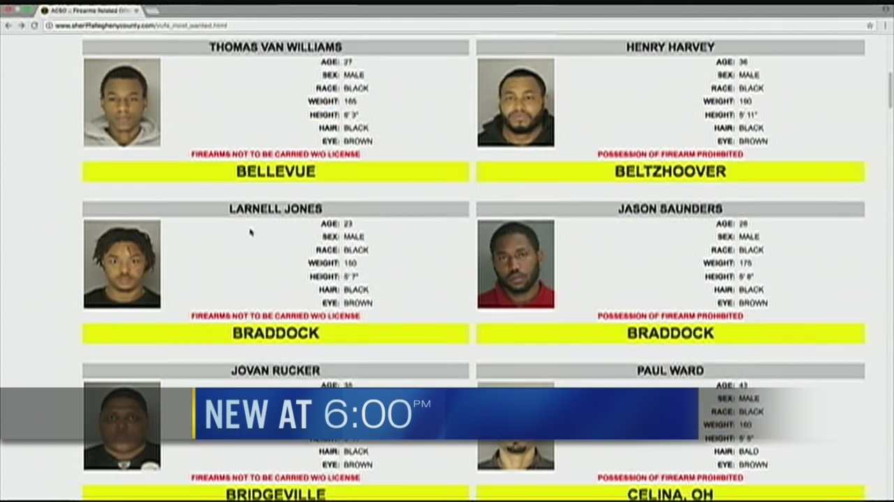 Allegheny Co  now posting mugshots, descriptions online | WPXI
