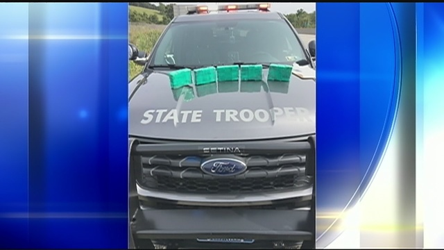 8000 Stamp Bags Of Heroin Found In Car On Pa Turnpike