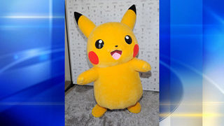 Pokemon-costumed man arrested after White House jump