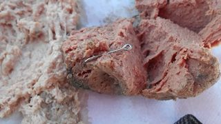 Meatballs with fish hooks hidden inside of them found at Florida dog park