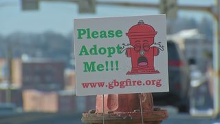 Volunteer fire department puts hydrants up for adoption