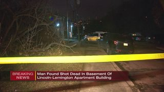 Man found shot, killed in basement of apartment building