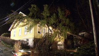 Large tree falls onto Marshall Township home during storms