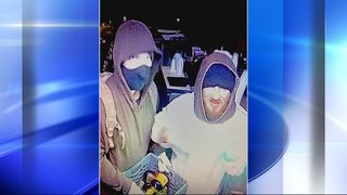 Series of break-ins cause more losses in damage than thefts