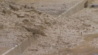 Heavy rain leaves behind landslides in Western Pa.