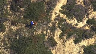 VIDEO: Man falls off cliff trying to save dog